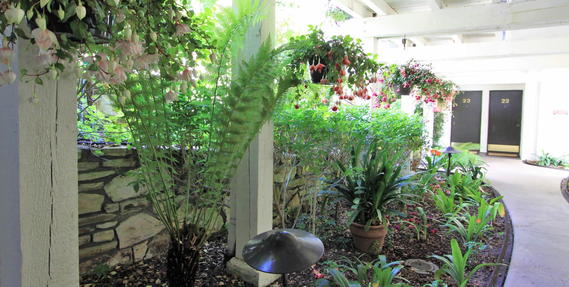 lobos lodge carmel california hotel garden